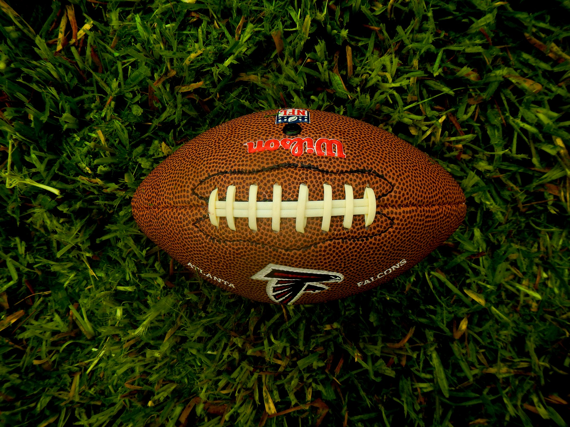 A football on turf.