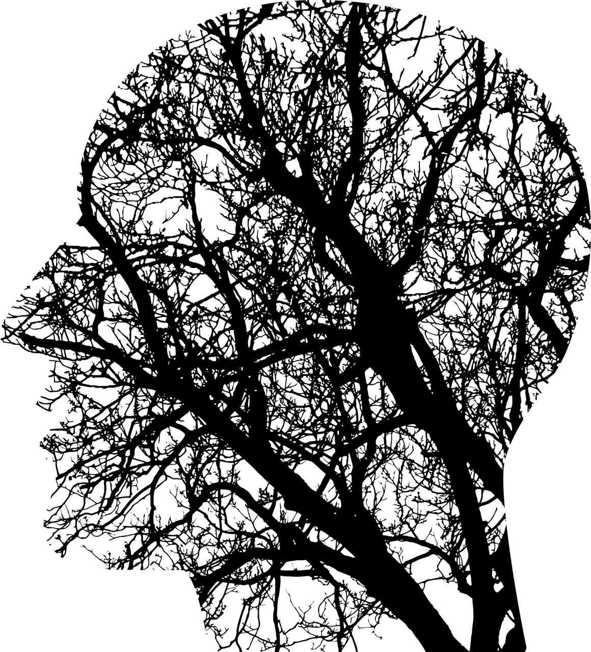 An artists illustration of a head with branches coming up.